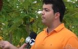Assista a reportagem da TV Tribuna do ES em nossa plantação